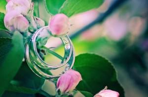 fotograf_trebic_svatebni_foto_40452111